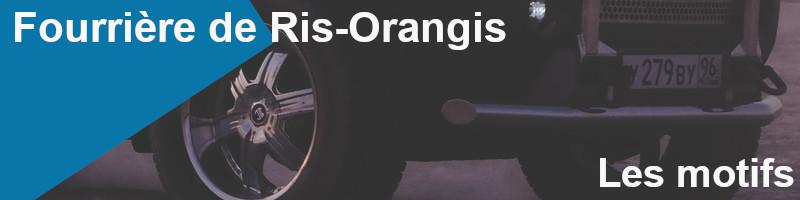 motifs fourrière ris-orangis